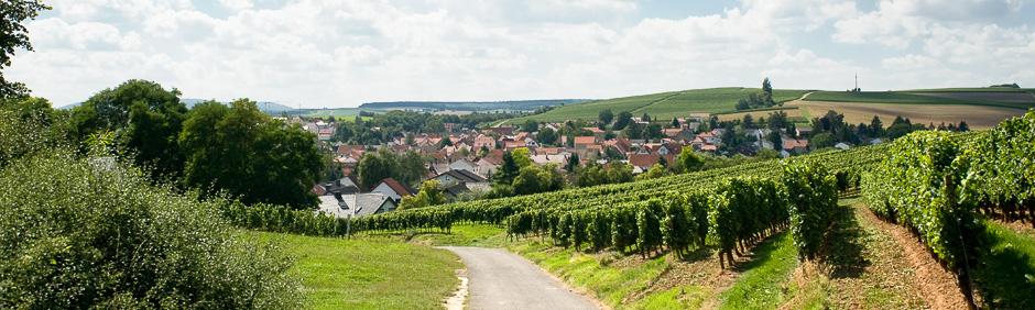 Erlebnis Landschaft und Geschichte rund um Alzey-Weinheim